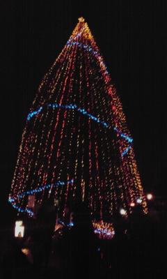 水島に巨大クリスマスツリー!